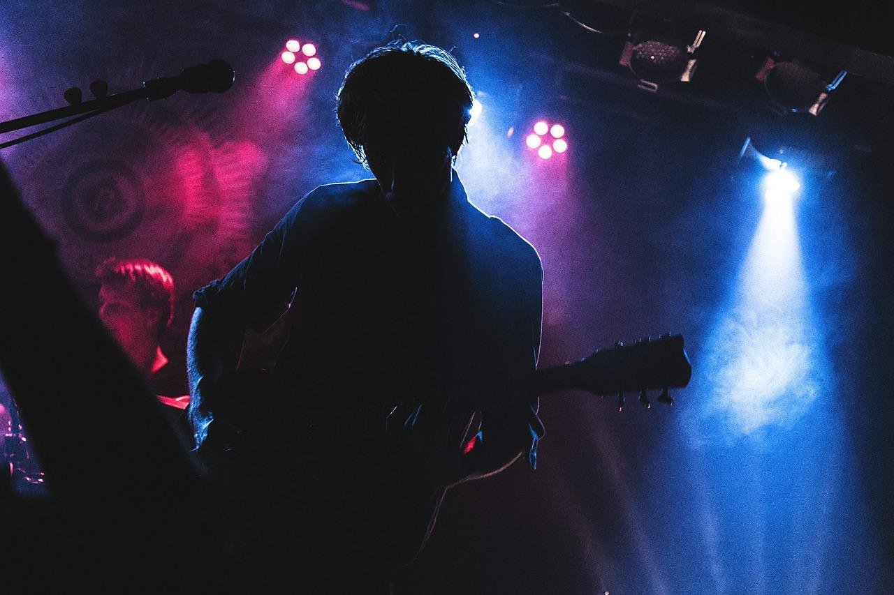 Nightlife, Konzert (dinkobraz, Pixabay)