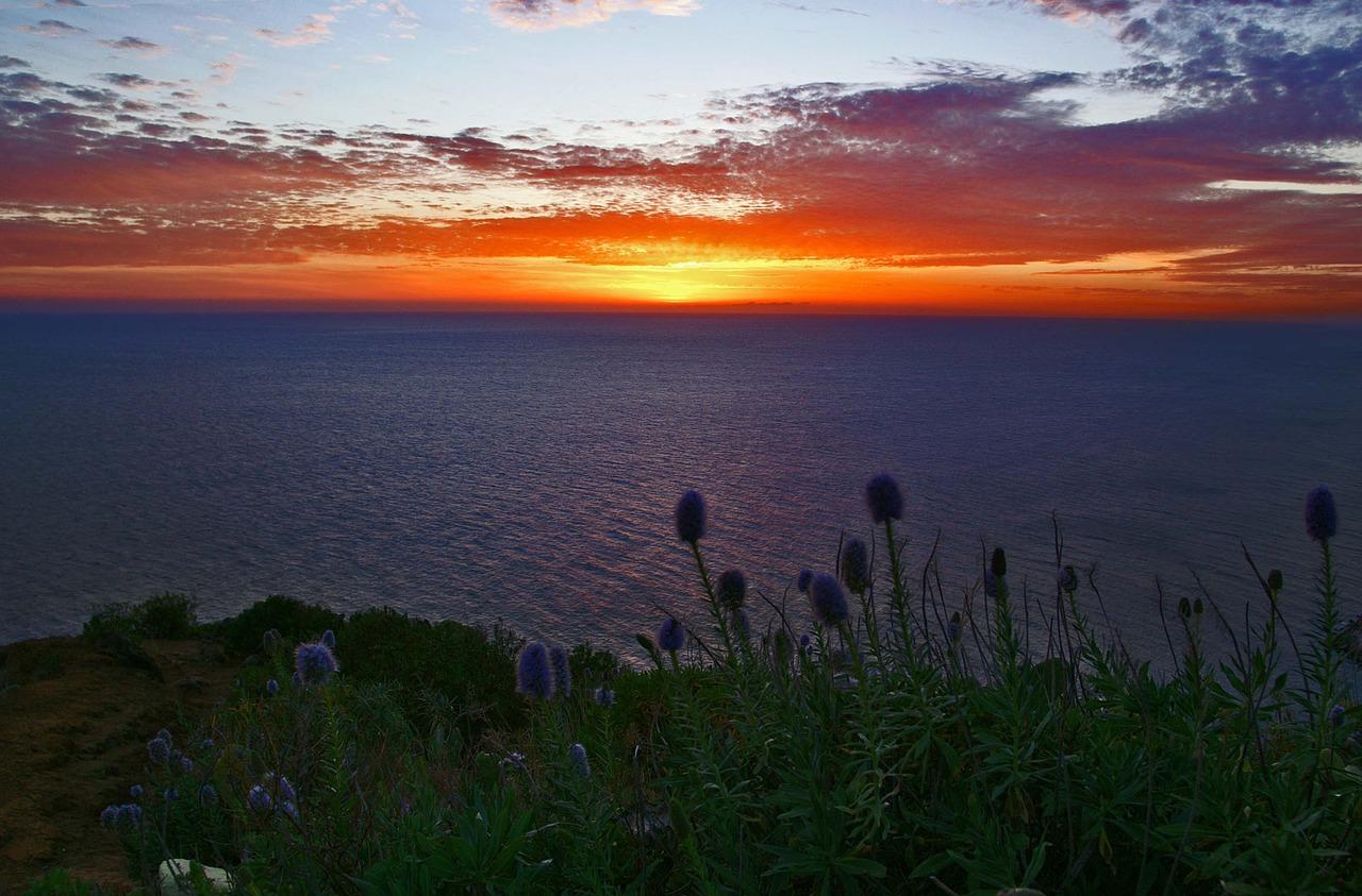 Madeira für Alleinreisende (Bild: Pixabay)