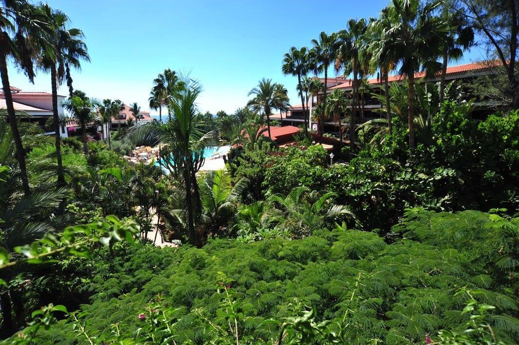 tropischer-garten_copyright_hotel-parque-tropical