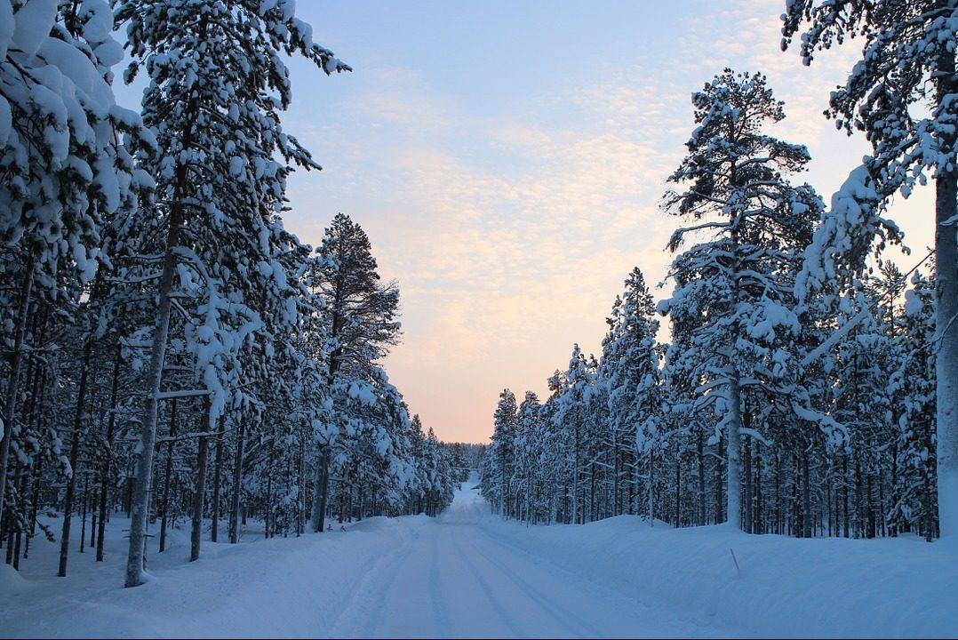 Lappland, Winter, Schnee, Wald