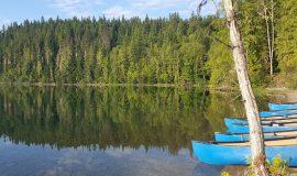 Kanada, Kanu, Abenteuer, Abenteuerreisen, Abenteuerurlaub, Singlereisen, Solo Travel (Bild: emmaw, Pixabay)