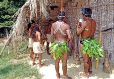 Brasilien, Ureinwohner, Regenwald, Indigenes Volk