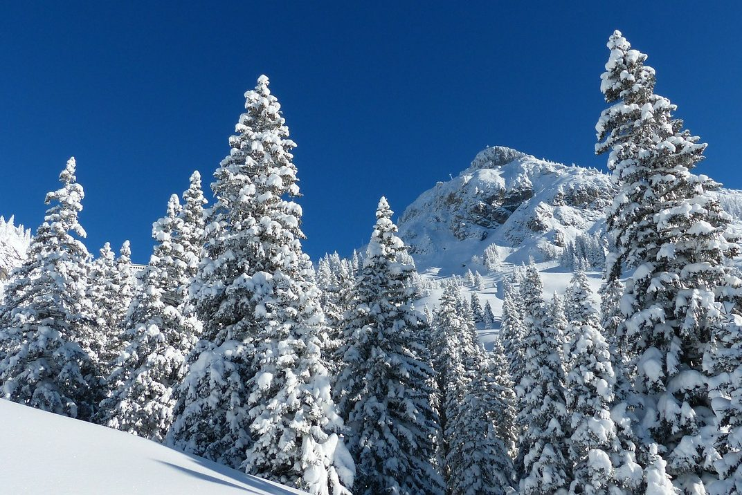 Österreich, Tirol, Winter, Schnee, Wald, Berge