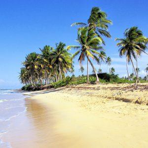 Dominikanische Republik, Strand, Palmen, Karibik