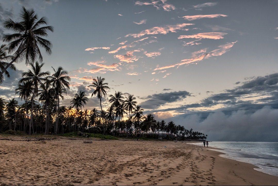 Dominikanische Republik, Strand, Palmen