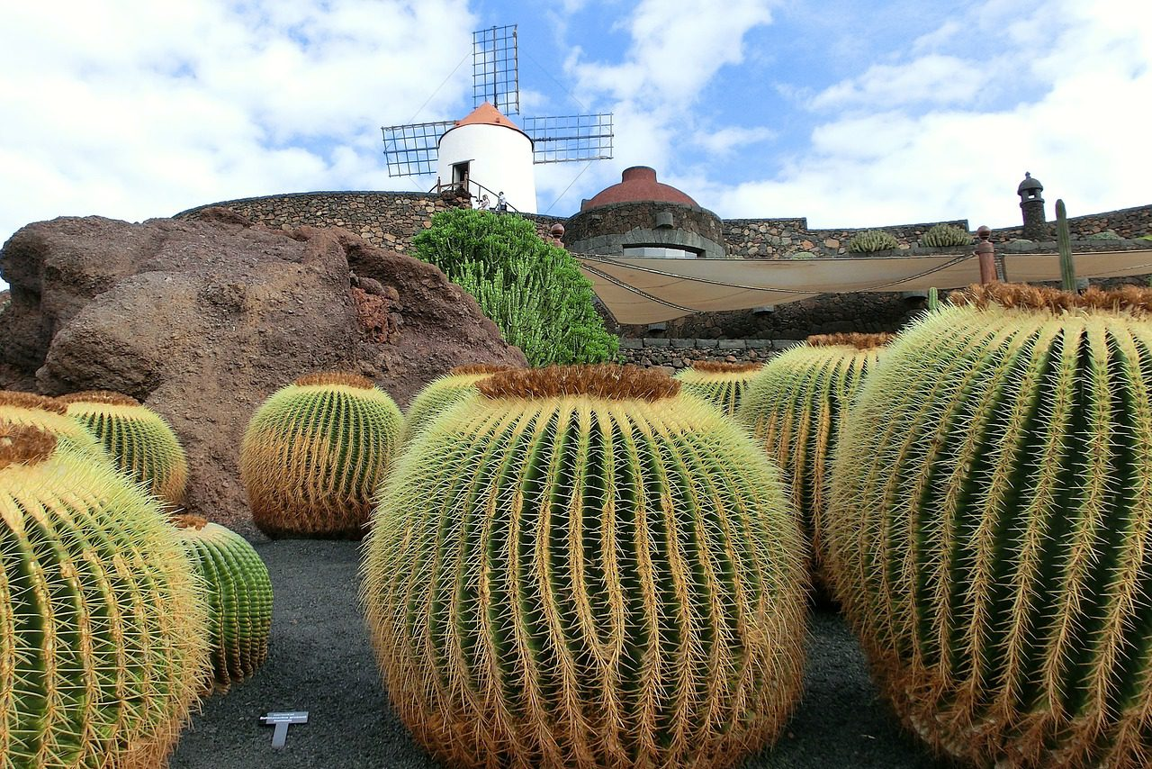 Lanzarote, Canary Islands, Spain, Singles Holiday, Singles Vacations, Solo Travel, Windmill