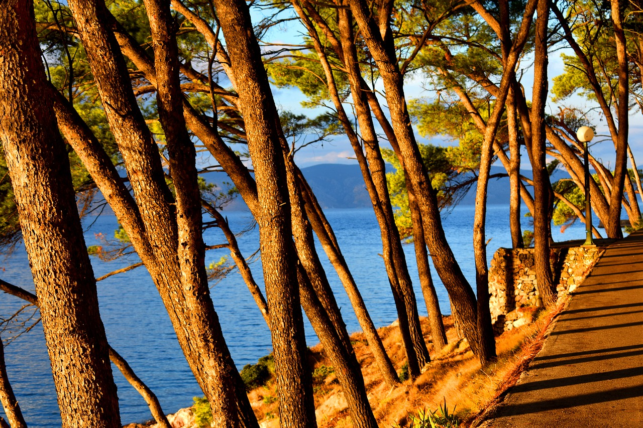 Solo Trip to Croatia & Solo Holidays Croatia (Image Credit: Pixabay)
