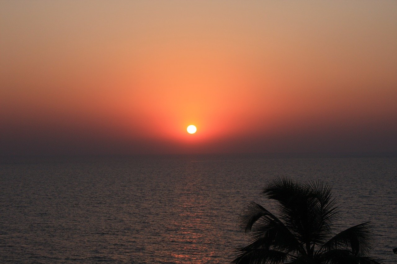India, beach, palm trees, sunset, Singles Holidays, Solo Travel, Singles Vacations (Image: rsplbiz, Pixabay)