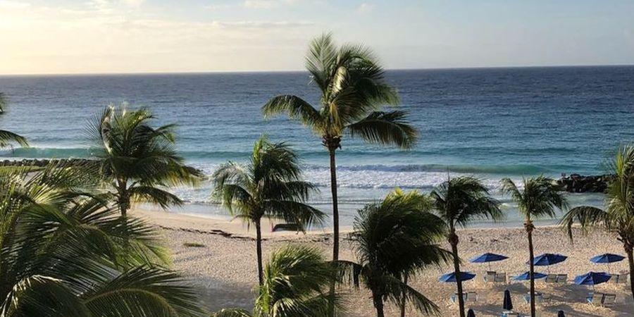Barbados Singlereise (Bild: Sunwave)