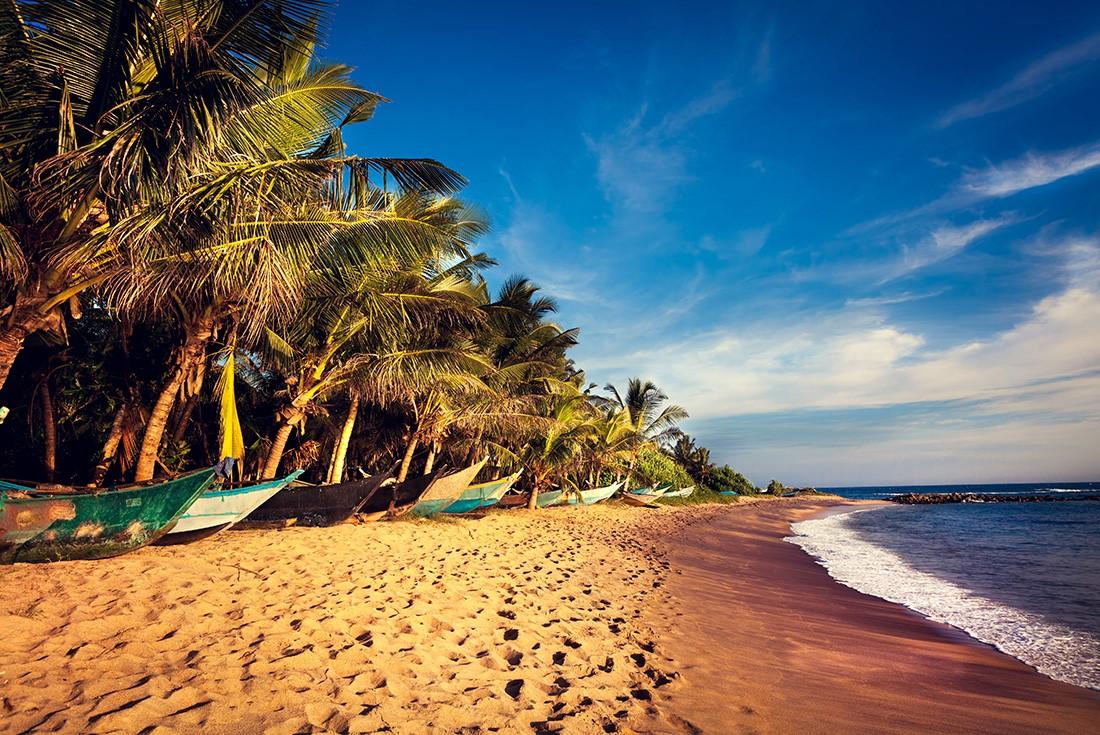 Cycle Sri Lanka: North - Sri Lanka Tour (Image Credit: Intrepid Travel)