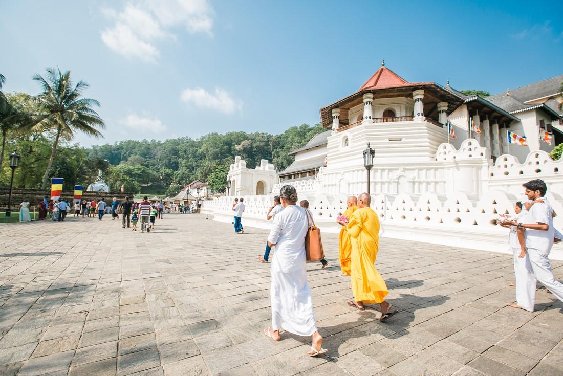Sri Lanka Explorer - Sri Lanka Tour (Image Credit: Intrepid Travel)
