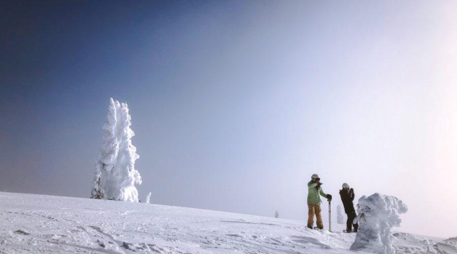 Singles Ski Trip, Solo Ski Trip, Ski Trips, Ski Tours, Skiing Holiday Packages, Ski Vacation Packages, Group Ski Holidays, Ski Trip Packages, Snowboarding Trips, Snowboarding Vacation, Singles Holidays, Solo Travel, Singles Vacations, Solo Holidays (Image: Holly Mandarich, Unsplash)
