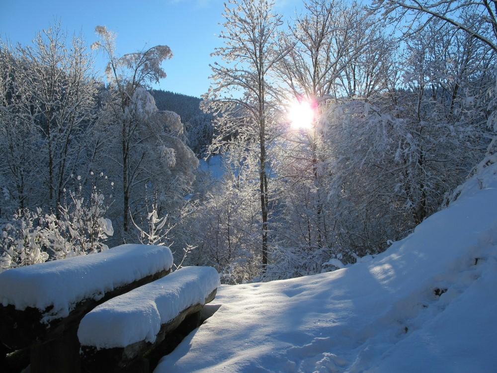 Weihnachten und Silvester im Schwarzwald (Bild: Singlereisen.de)