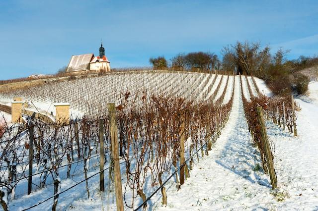 Silvester in der Weinregion Franken feiern (Bild: Singlereisen.de)