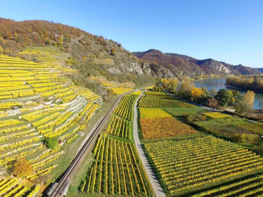 Genusswandern an Rhein und Ahr für Alleinreisende (Bild: Singlereisen.de)