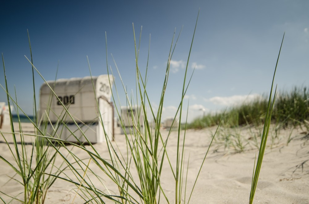 Husum an der Nordsee mit Wattenmeer & Sylt (Bild: Singlereisen.de)