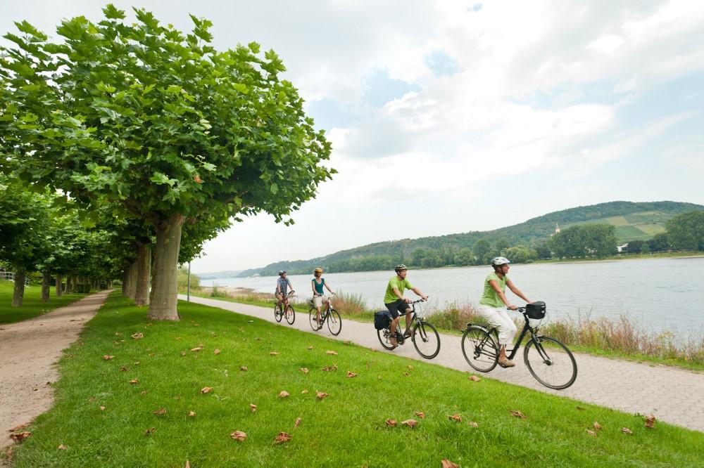 Radfahren am Rhein mit viel Kultur & Genuss (Bild: Singlereisen.de)